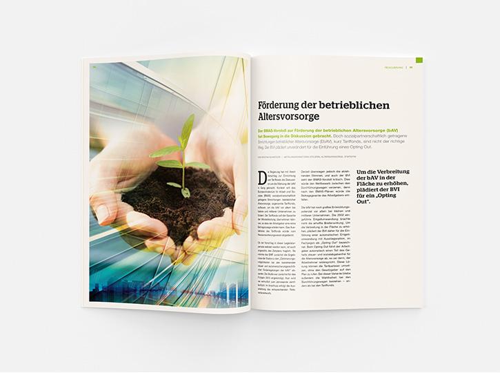 BVI_Jahrbuch_2015_Projekt_08